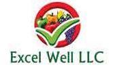 Excel Well LLC